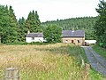 The Forks, Kielder Forest - geograph.org.uk - 209914.jpg