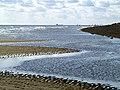 The Kilnsea Shoreline - geograph.org.uk - 788685.jpg