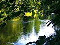The River Neckar - panoramio (1).jpg