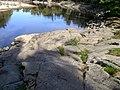 The Rocks in Wagga Wagga.jpg