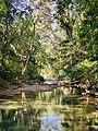 The Secret Beauty of Nature in Srilanka A6DB0370-9853-4706-B3D2-31A66E4768FF.jpg