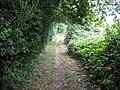 Thorpe, Footpath from Egham Hythe to Norlands Lane - geograph.org.uk - 911689.jpg