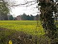 Thurlestone Grange, Derbys near Elvaston Castle - geograph.org.uk - 1050850.jpg