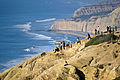 Torrey Pines cliffs.jpg