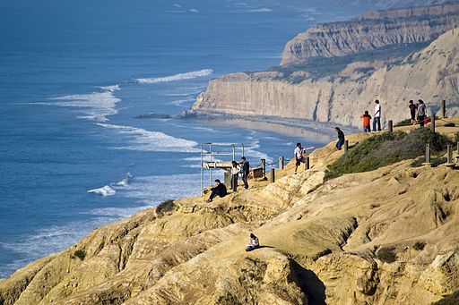 Torrey Pines cliffs