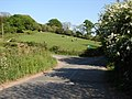 Track leading to Fort off Church Road - geograph.org.uk - 422056.jpg