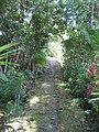 Trail to Yap Village (2848943757).jpg