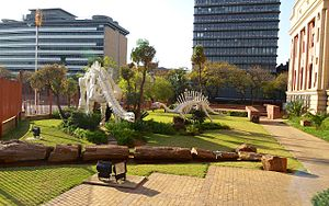 Transvaal Museum - Image: Transvaal Museum 033