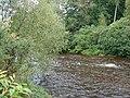 Trawsgoed Pool, Afon Ystwyth - geograph.org.uk - 284213.jpg