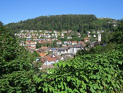 Triberg seen from the west
