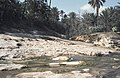 Tunesien1983-007 hg.jpg