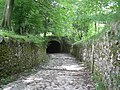 Tunnel on the bridleway - geograph.org.uk - 858890.jpg