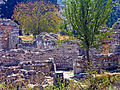 Turkey-2822 (2217176056).jpg
