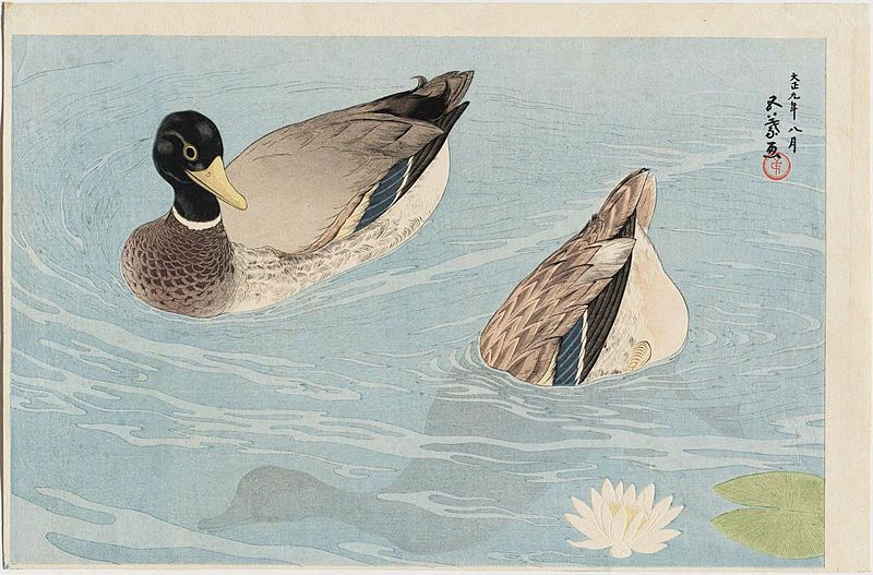 File:Two Ducks by Hashiguchi Goyō.jpg