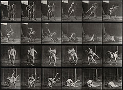 Two men wrestling. Photogravure after Eadweard Muybridge, 18 Wellcome V0048678.jpg