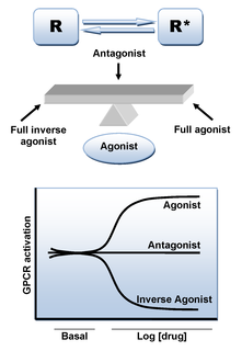 Adrenergic antagonist drug that binds to but do not activate adrenergic receptors
