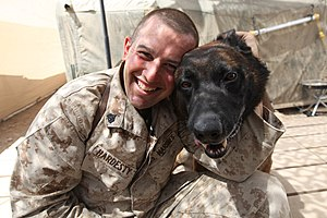 Human–canine bond - A combat tracker dog handler with his dog