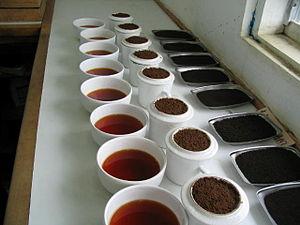 Coffee cupping - Coffee cupping setup in Uganda.