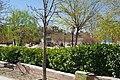 VIEW , ®'s - DiDi - RM - Ð 6K - ┼ , MADRID PARQUE de PEÑUELAS JARDÍN - panoramio (105).jpg