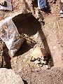 Varnhem innan munkarna kom, den 13 juni 2007, bild 12.jpg
