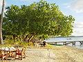 Vava'u beach3.jpg