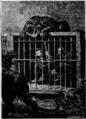 Verne - La Maison à vapeur, Hetzel, 1906, Ill. page 291.png