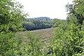 Versoix - panoramio.jpg