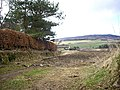 View WSW from Gallowhill West - geograph.org.uk - 1223580.jpg