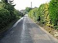 View along Felderland Lane - geograph.org.uk - 583674.jpg