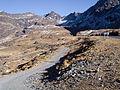 View from Unduavi Valley.jpg