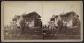 View of a collapsed house, by Camp, D. S. (Daniel S.) 2.png
