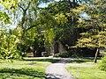 Visby Botanical Garden Sankt Olofs kyrkoruin.JPG