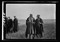 Visit to Beersheba Agricultural Station (Experimental) by Brig. Gen. Allen & staff & talks to Bedouin sheiks of district by station superintendent LOC matpc.20547.jpg