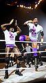 WWE Live 2015-04-17 21-45-09 ILCE-6000 0246 DxO (19684369295).jpg