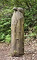 Waldmenschen Skulpturenpfad (Freiburg) jm9560.jpg