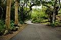 Walkway to Waimea Falls (5217004358).jpg