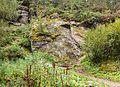 Wandeltocht rond Lago di Pian Palù (1800 m). in het Nationaal park Stelvio (Italië). Bergpad naar Lago di Pian Palù. 02.jpg