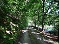 Wanderweg im Goldersbachtal - panoramio.jpg