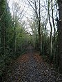 Wapple Way - geograph.org.uk - 1573373.jpg