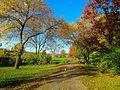 Warner Park - panoramio (7).jpg