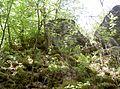 Weingartenfels 08.jpg