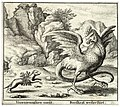 Wenceslas Hollar - The basilisk and the weasel.jpg