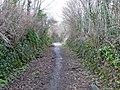 Westacott Road - geograph.org.uk - 750032.jpg