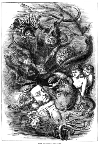 """What an Aquarium Should Be"" - a humorous 1876 British engraving, apparently showing Thomas Huxley dreaming about sea creatures What an Aquarium Should Be.png"