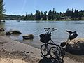 Willamette River (34359826410).jpg
