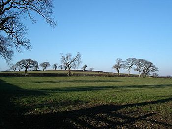 English: Winter sun on farmland. Open farmland...