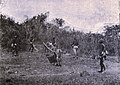 Wounded American on stretcher in the Philippines, 1899.jpg