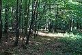 Wrześniowy spacer - panoramio.jpg