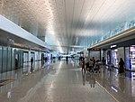 Wuhan Tianhe Airport T3 1.jpg