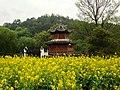 Wuyuan, Shangrao, Jiangxi, China - panoramio (48).jpg
